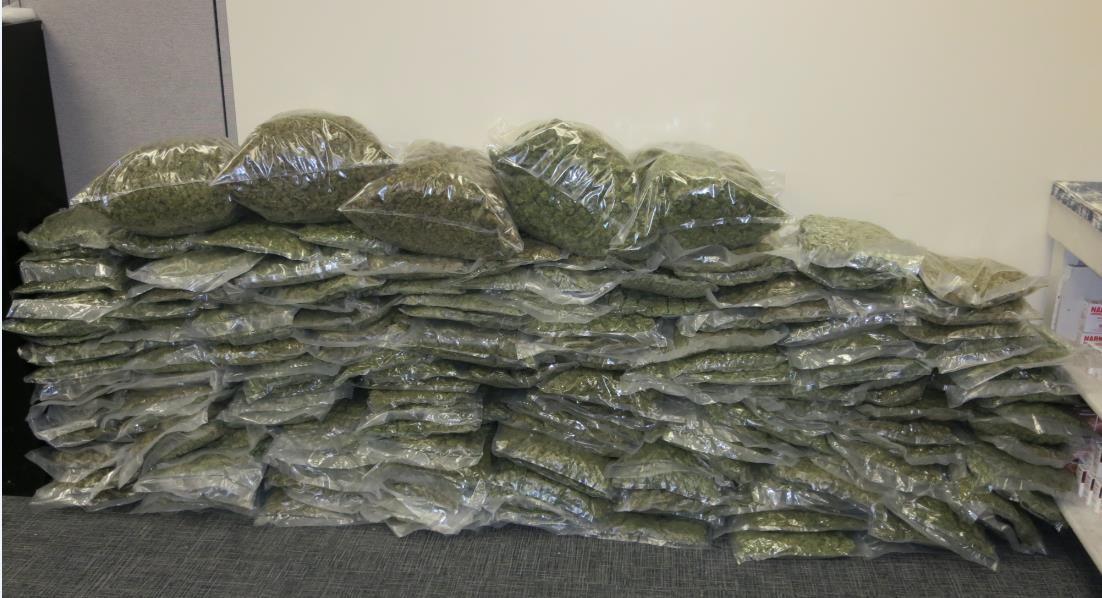 School Closings And Delays >> 11alive.com | Sheriff: 200 lbs. of medical marijuana found ...
