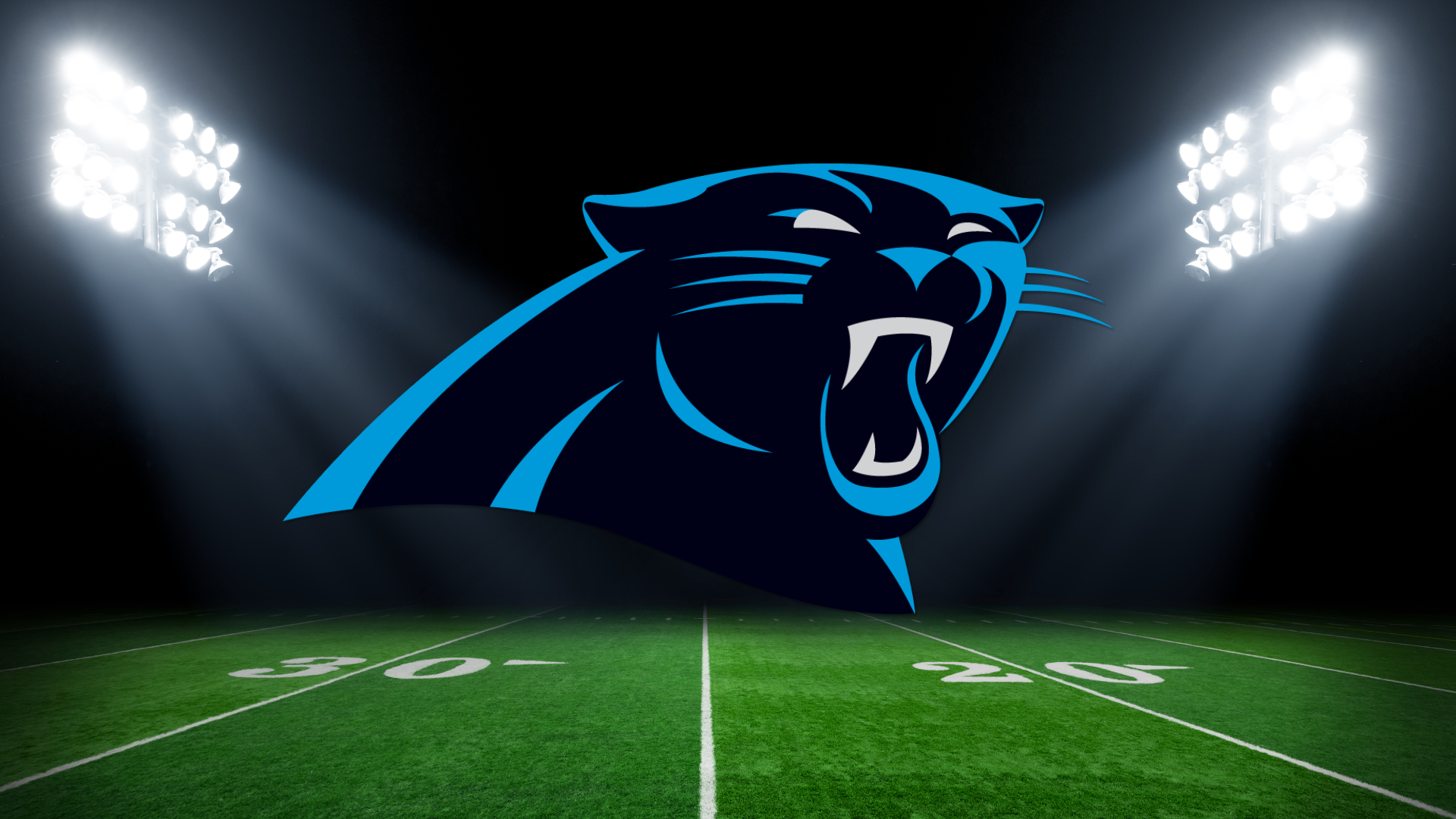 Image result for Panthers wfmy